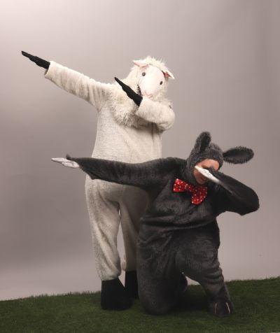 Artistiasu vuokrapuku pupu ja lammas