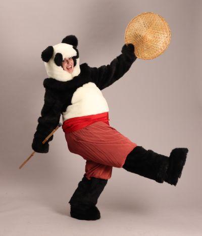 Artistiasu vuokrapuku, Kung Fu Panda