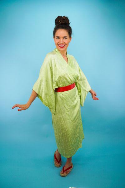 Artistiasu vuokrapuku, moderni prinsessa Mulan